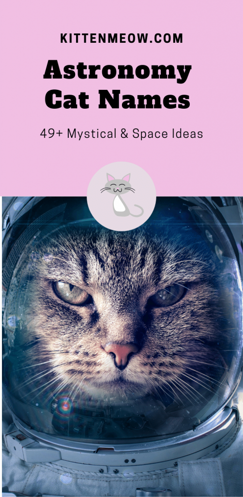 Astronomy cat names pin