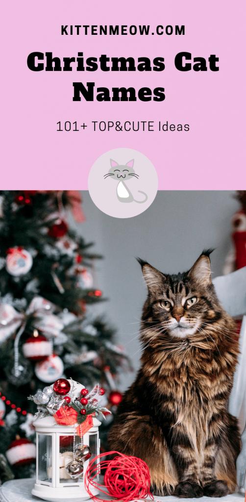 christmas cat names pin